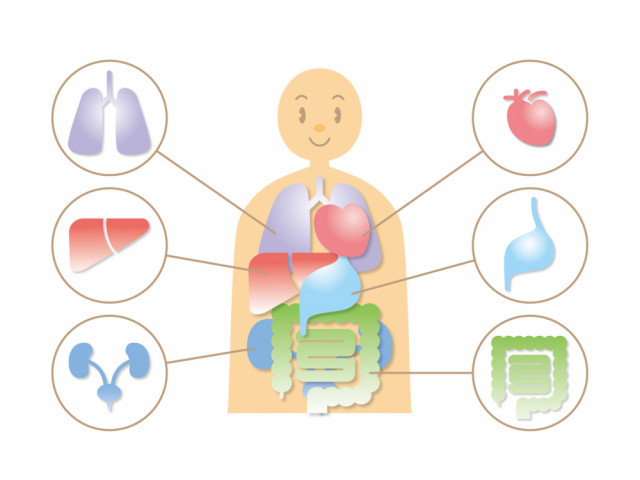 腹圧施術を行うことで血流が良くなり、頭痛を改善に導くことができます。