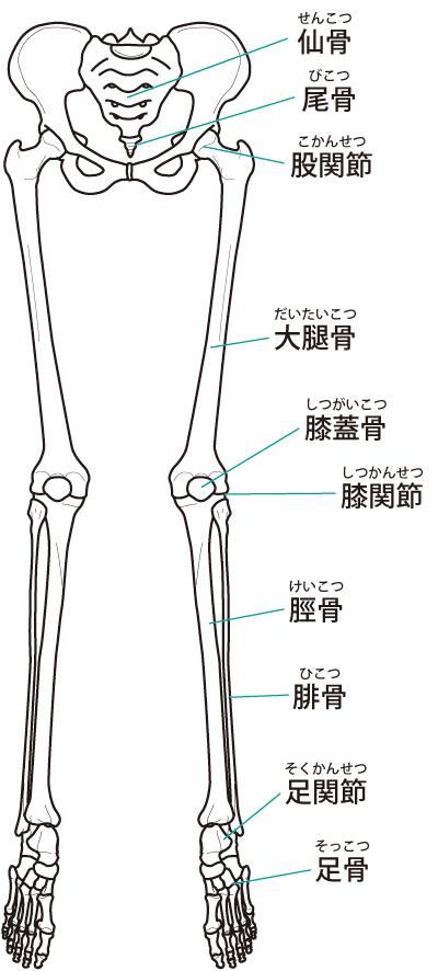 ランナー膝への当院のアプローチは?